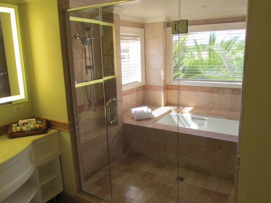 Grand Wailea A Waldorf Astoria Resort Dual Walk In Shower And Bath Combo