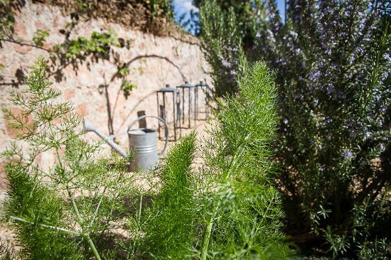 Le p'tit jardin