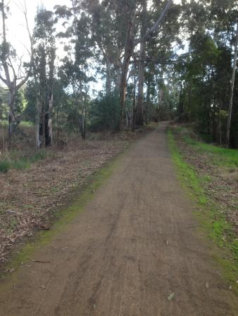 Boolarra to Mirboo North Rail Trail
