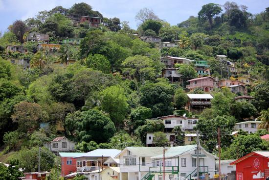 Charlotteville, Tobago: houses clinging to the hillside above the village