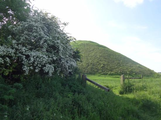 Silbury Hill: Sadly leaving the hill.