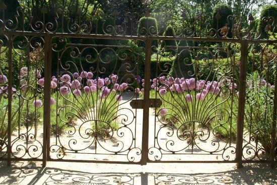 Jardin Agapanthe: Combinatie Allium met lavendel