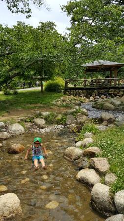 Matsumoto Alps Park: 小川でじゃぶじゃぶあそべます(^^
