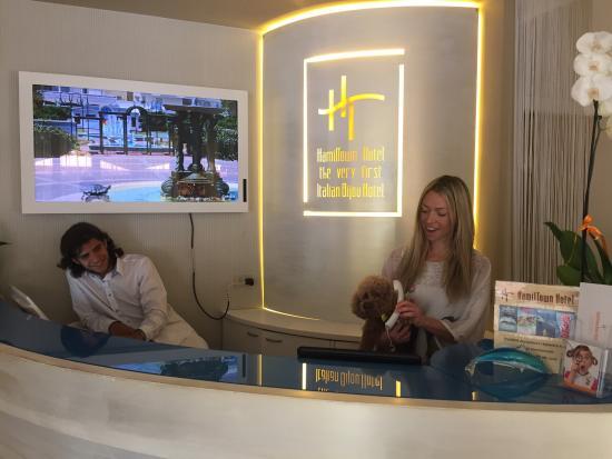 Hotel HamilTown : Receptionist 😀