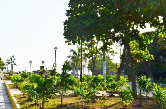 Granada, Nicaragua: 緑溢れる公園
