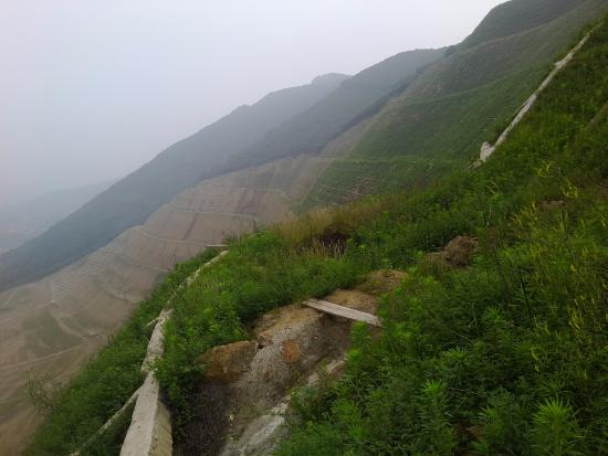 Dayangshan National Forest Park