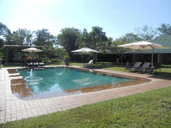 Perry's Bridge Hollow: Hotel pool