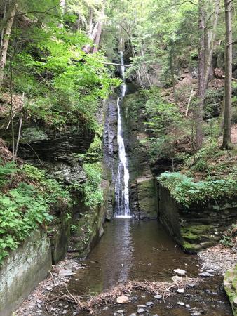 Dingmans Ferry, Pensilvania: Beautiful fall