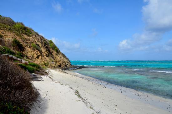 Petit St.Vincent: Private beach area at Cottage 17