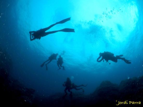 L'AMFORA, Centre d'immersio: En Tossa es facil encontrar estas maravillas