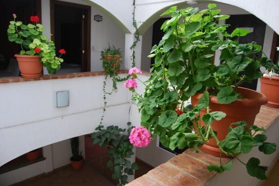 Jardines de Luz Hotel