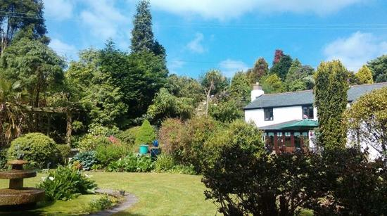 Trethurgy, UK: Little Grey Cottage and gardens