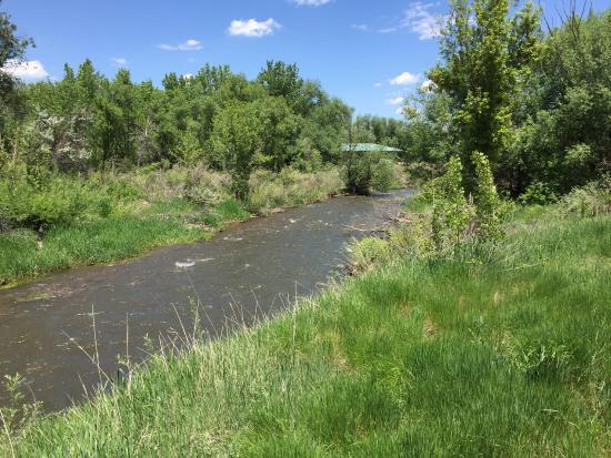 Bear Creek Greenbelt: Bear Creek, photo taken from paved trail