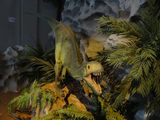 Esperaza, Prancis: Dino