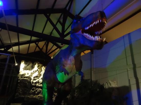 Esperaza, Fransa: T-rex