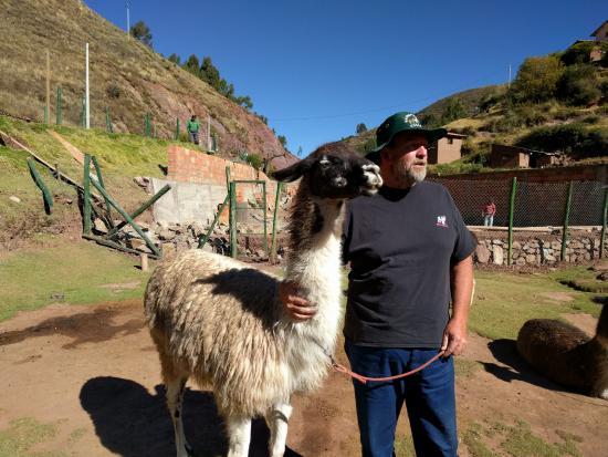 Huarocondo, Pérou : Lyle at animal sanctuary