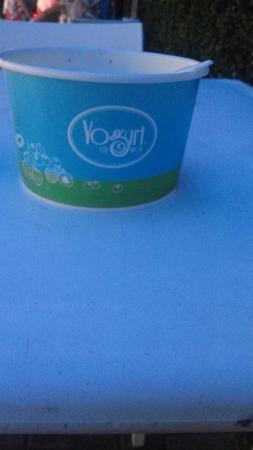 Yogurt My Way: 20160611_214924_large.jpg