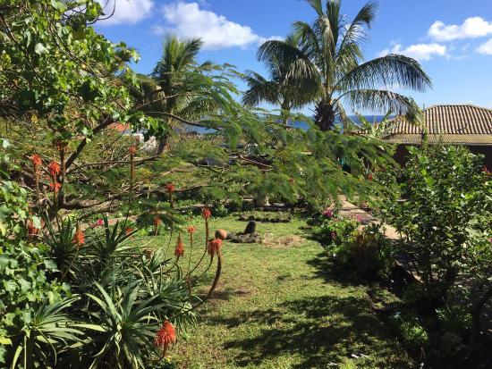 Mana Nui Inn: photo1.jpg