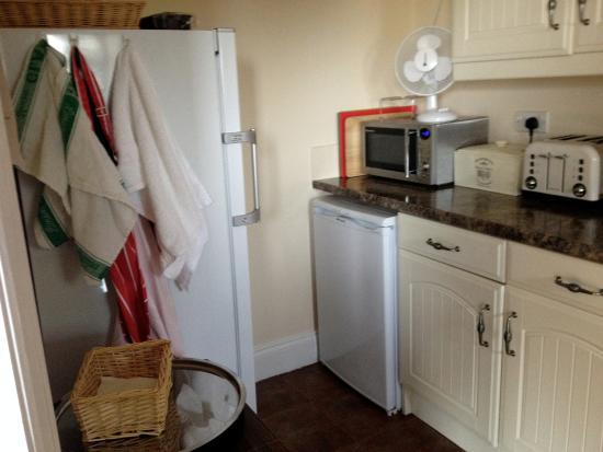 South Wingfield, UK: Fridge & microwave, toaster and stove