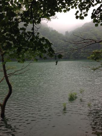 Shirakami Sanchi: photo1.jpg