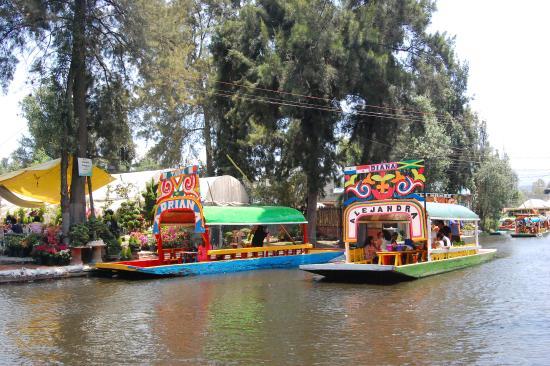 Trajineras navegando por los canales de xochimilco for Viveros de plantas