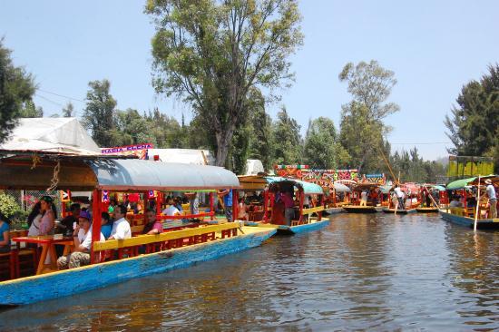 Trajineras Navegando Por Los Canales De Xochimilco Picture Of Floating Gardens Of Xochimilco