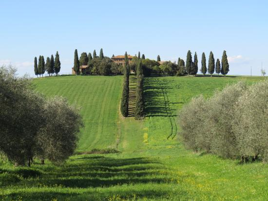 Tours Around Tuscany - Day Tours : The house from 'Gladiator'