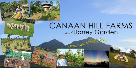 Caibiran, Philippines: Things To Do in CANAAN