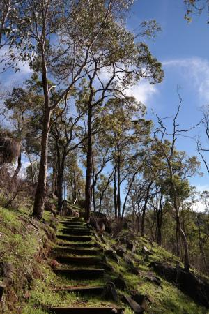 Gidgegannup, Australien: Path up to Kangaroos
