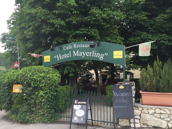 Mayerling, Østrig: Это настоящий Венский лес. Тихий, спокойный и освежающий.