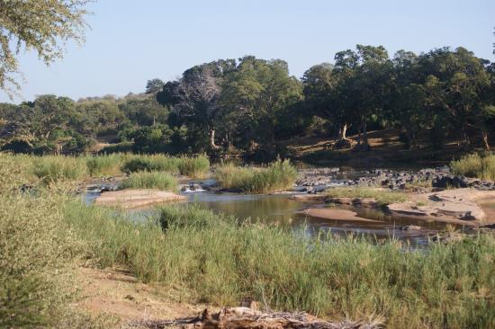 Tremisana Game Lodge: photo2.jpg