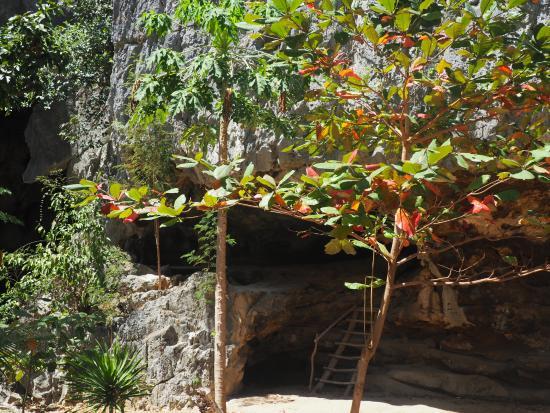 Busuanga Island, Filippine: Der er en lille grotte på øen, hvor der er vand indeni.