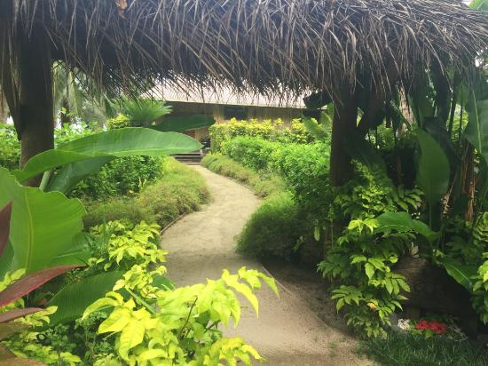 Qamea Resort And Spa Fiji: The path to the Royal Beach House in our Fijian paradise!