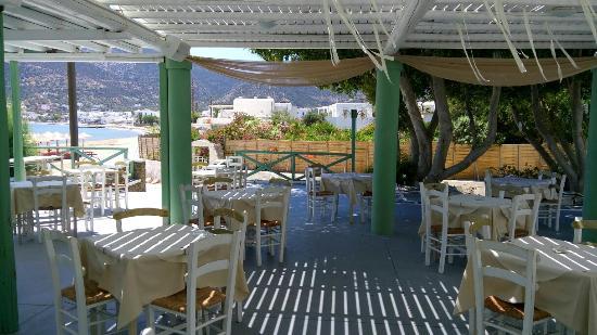 Sofia Restaurant