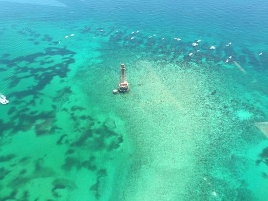 Marathon Shores, FL: Marathon lighthouse and reef, beautiful.