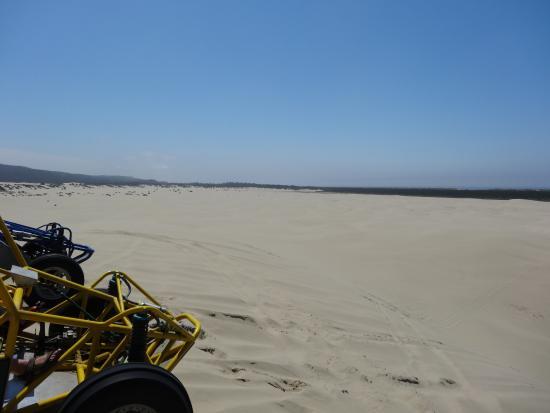 Florence, OR: Oregon Sand Dunes