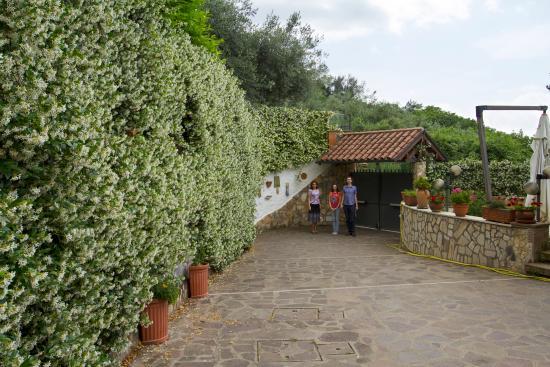 Снимок B&B Il Casale Dei Fiori