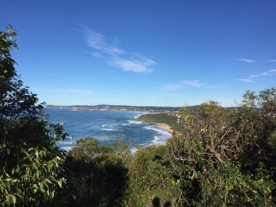 Wamberal, Australien: Coastal walk nearby.