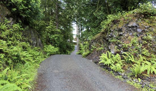 The He-Tin-Kis Lodge: The driveway down to the Lodge.