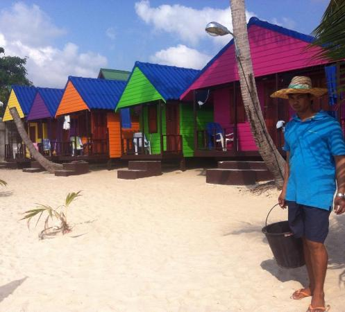 New Hut Bungalows: Photo prise devant les bungalows