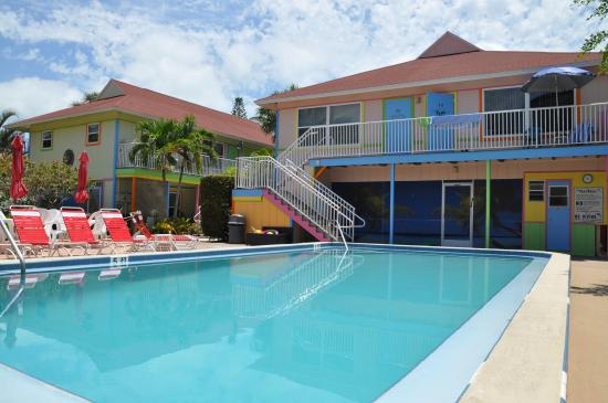 Palm Terrace Resort: Poolansicht