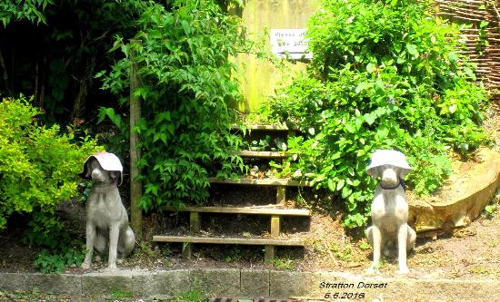 Stratton, UK: Nearby sunbathing Guard Dogs.