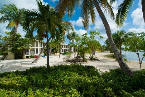Island Houses of Cayman Kai