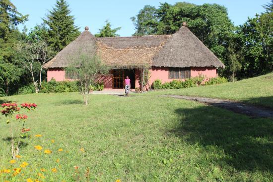 Ngurdoto Lodge : Pure luxe