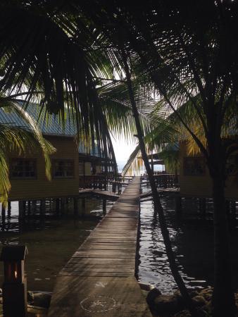 Bahia Del Sol: photo1.jpg