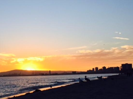 City Beach: Sunset from the beach