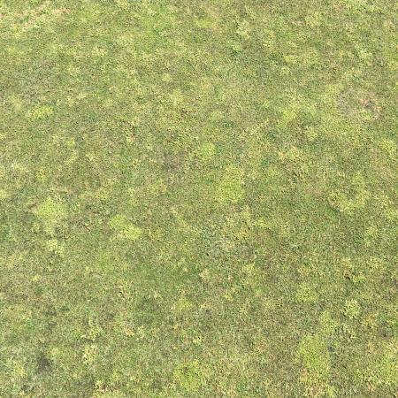 University Place, واشنطن: Leopard pattern on greens!