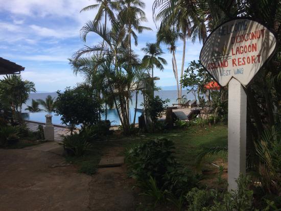 D'Coconut Lagoon Photo