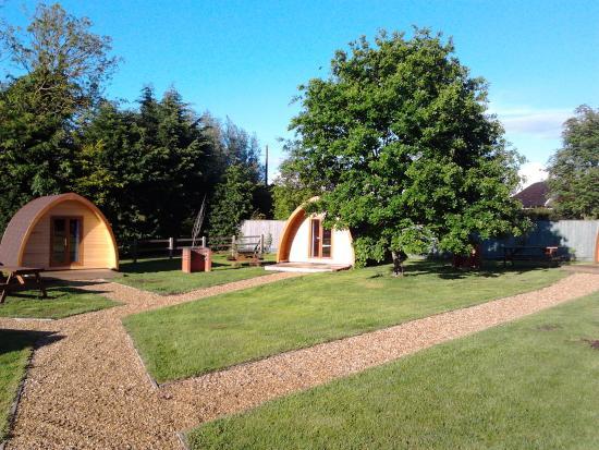King's Lynn Caravan & Camping Park : Pods