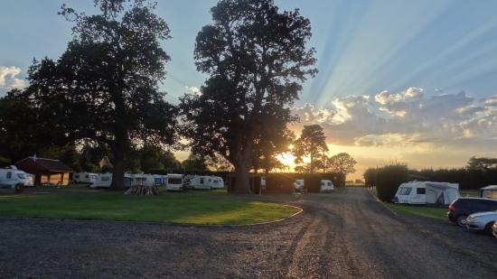 King's Lynn Caravan & Camping Park : Site sunset